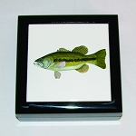 Fish Keepsake Box